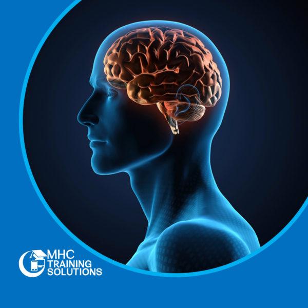 Epilepsy Awareness Training – Level 2 – Online Course – CPDUK Accredited